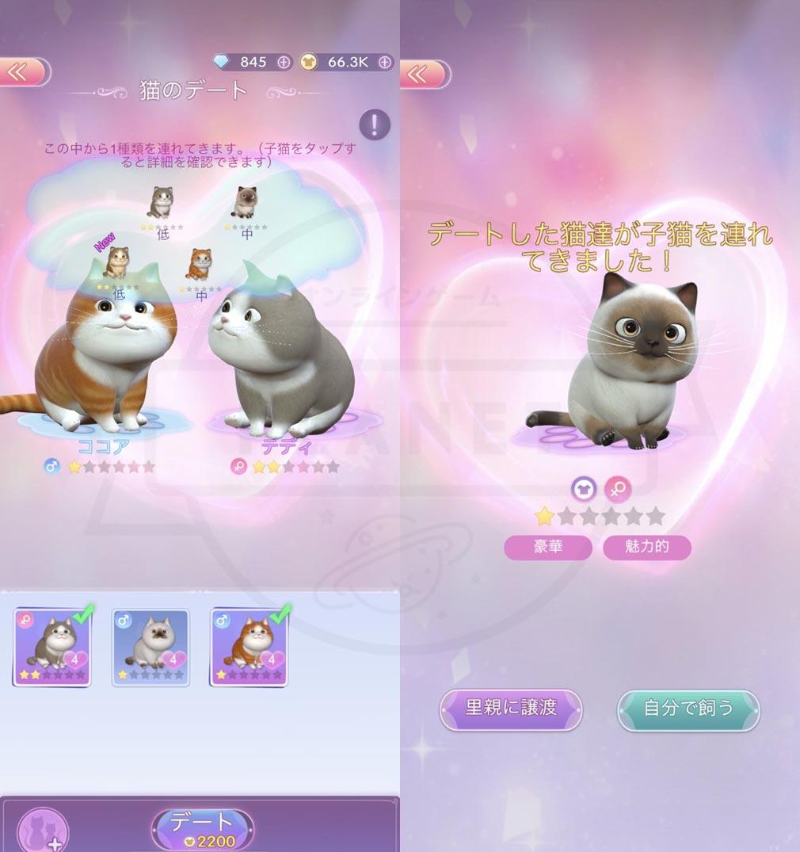 タイムプリンセス(タイプリ) ペット同士のデート、ペットの赤ちゃんスクリーンショット