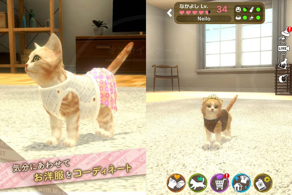 with My CAT 猫とくらそう (猫くら) コーディネート紹介イメージ