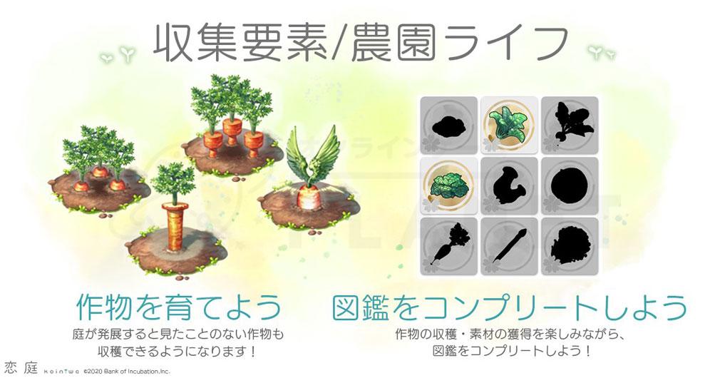 恋庭(Koiniwa) 『作物』紹介イメージ