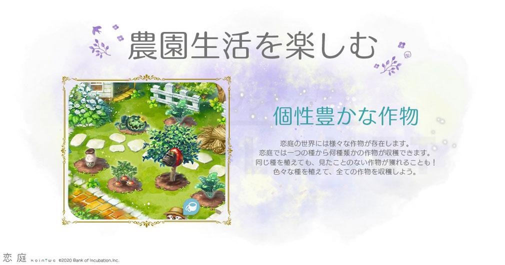 恋庭(Koiniwa) 『農園』生活紹介イメージ