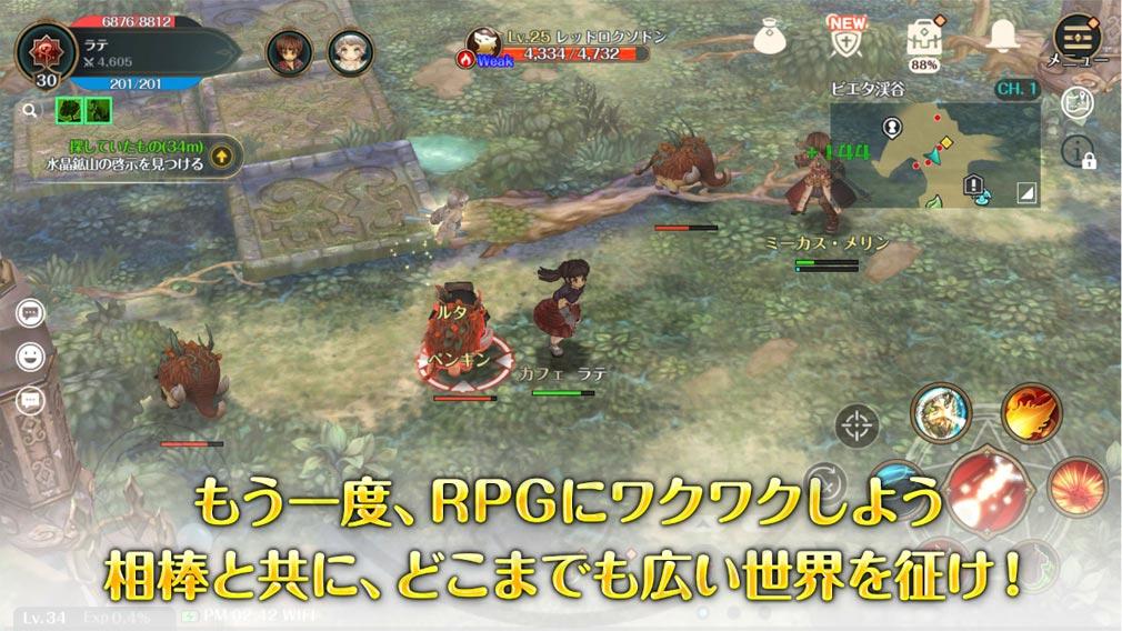Re:Tree of Savior(リ・ツリーオブセイヴァー)リセイヴァー ワクワクするようなファンタジーRPGを紹介イメージ