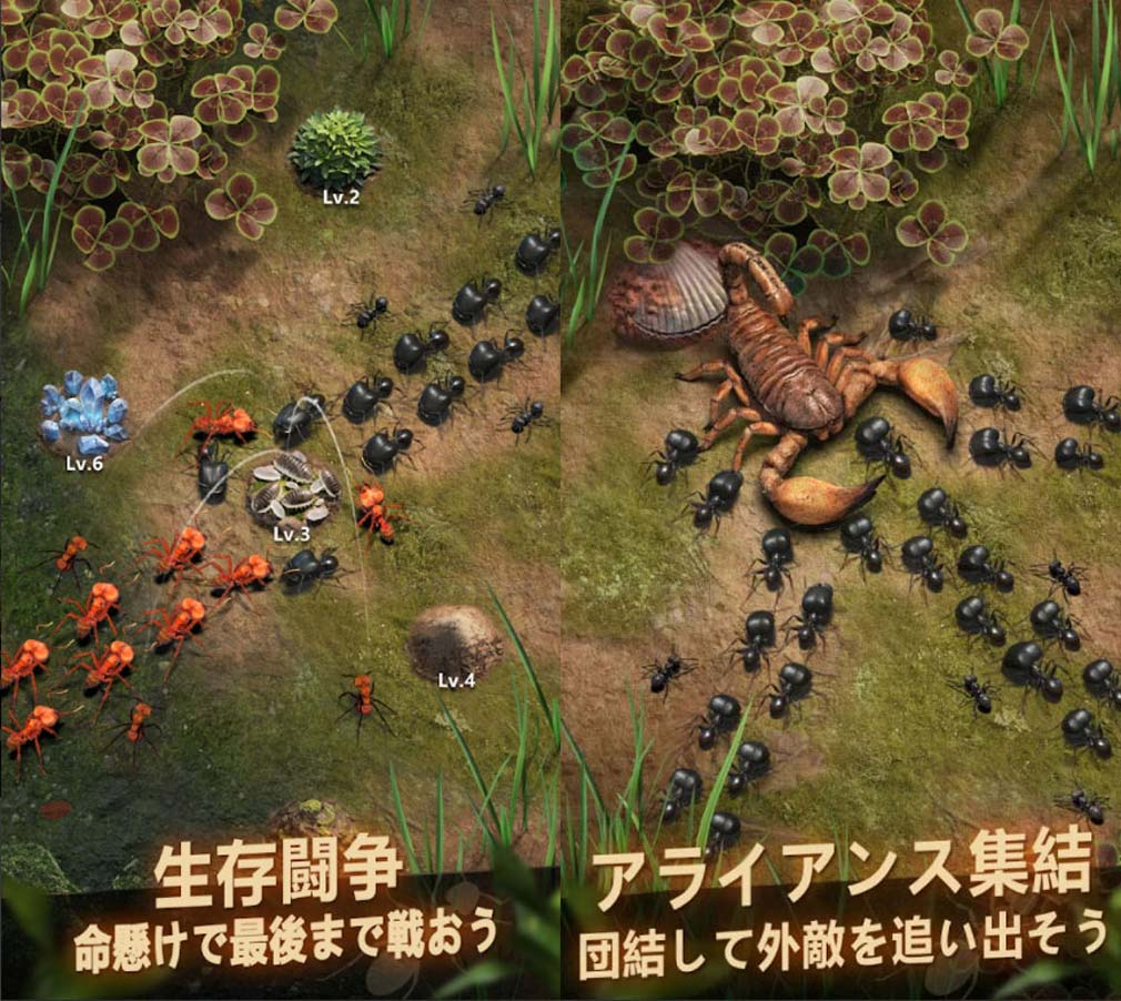 ザ・アンツ アンダーグラウンド キングダム 『アライアンス/同盟結成』紹介イメージ