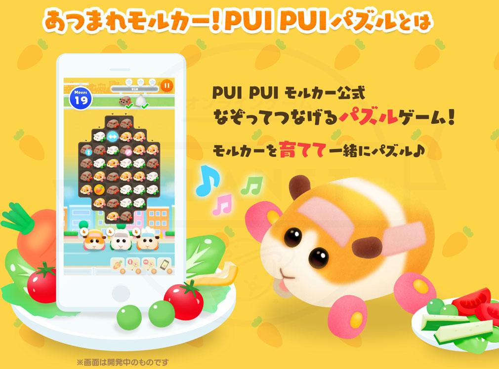 あつまれモルカー!PUI PUI パズル(ぷいパズ) 概要紹介イメージ